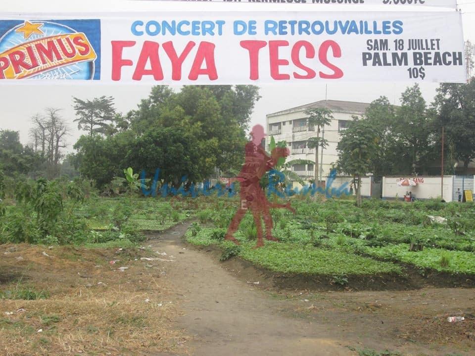 Faya Tess en concert à Kinshasa